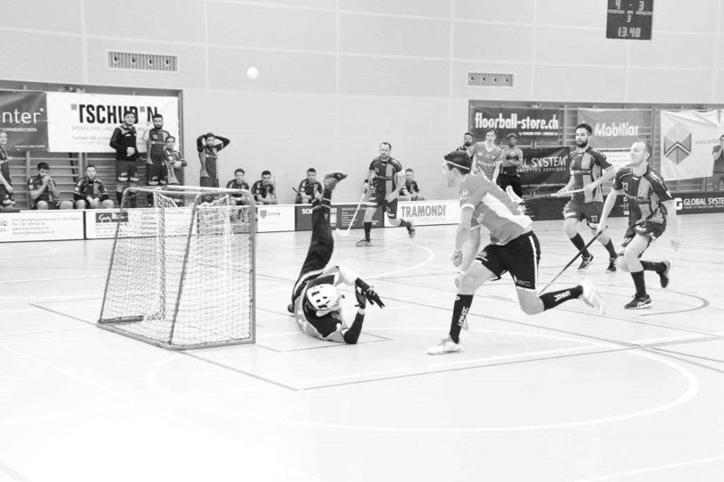 Floorball Goalie About Us David